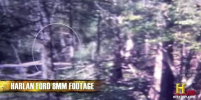 Ford's video of the Honey Island Swamp Monster.