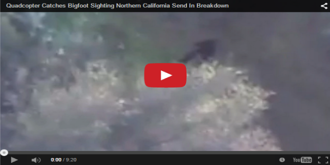 A video shows the moment an unsuspecting real estate agent captured footage of Bigfoot while filming in northern California.