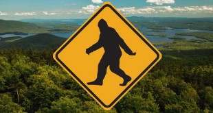 bigfoot-crossing