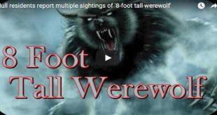 old-stinker-werewolf