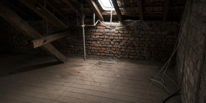 Mothman sightings in an attic in Colorado