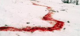Canadian Film Team Attacked by Ghouls (Zombies) in Siberia