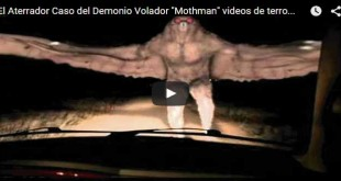 Firefighter Carlos Sanchez and an unnamed police officer reportedly had an encounter with the Mothman, verifying the cryptid is currently enjoying some time outside the States.
